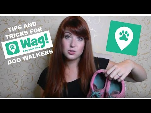 *TIPS AND TRICKS FOR WAG DOG WALKERS*