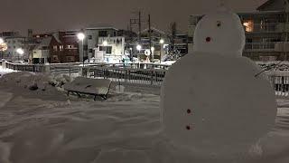 Snow Storm Hits Tokyo, Japan 22nd January 2018 thumbnail