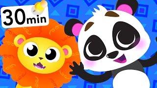 Wild Animals! Bear, Panda, Lion, Baby Shark! by Little Angel: Nursery Rhymes and Kid's Songs