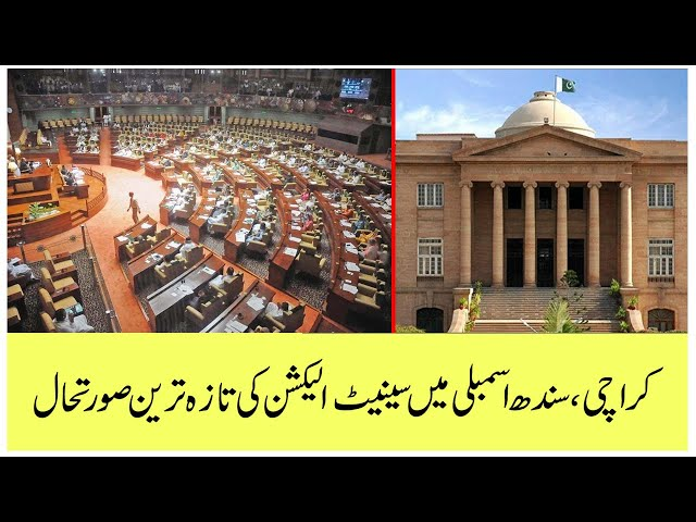 The Latest Situation Of Senate Elections In Sindh Assembly