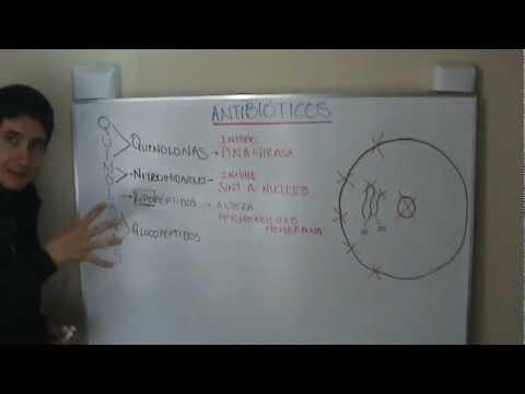 ANTIBIÓTICOS GENERALIDADES (Gracias por Donar)