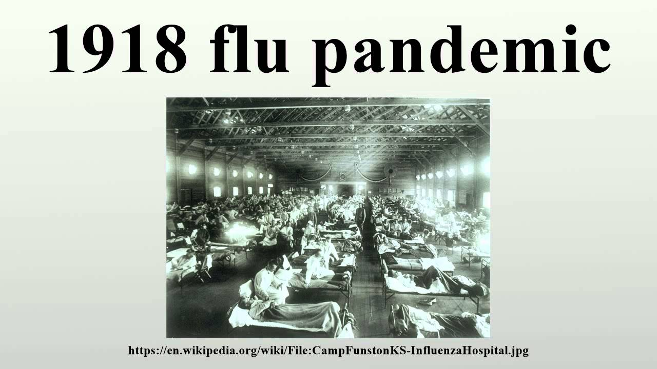 the influenza pandemic of 1918 essay The public health response the influenza pandemic of 1918-19 challenged the public health agencies the massive morbidities from the common illness of.