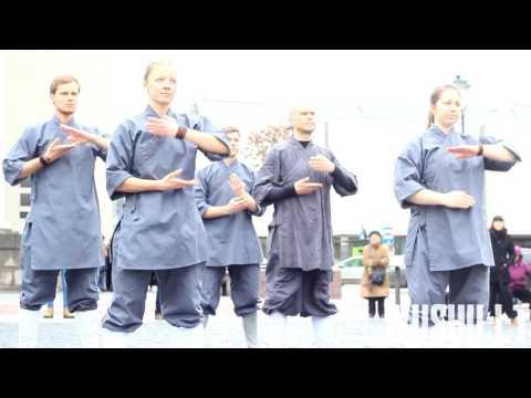 World Tai Chi & Qigong day 2017 Vilnius