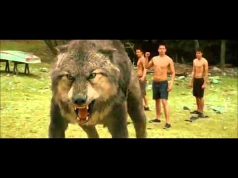 Jacob se transforma en lobo