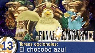 Guía Final Fantasy IX  #13  Primera evolución de Choco: Chocobo azul claro