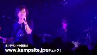 up-beat tribute band 5th Solo LIVE CM