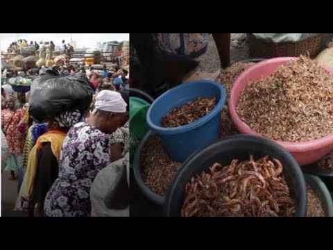 Oyingbo | Welcome To Lagos' Largest Seafood Market