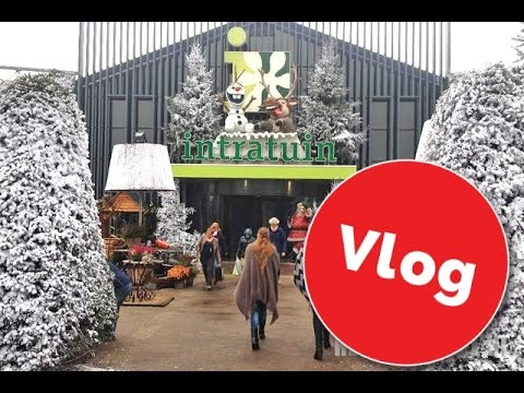Intratuin halsteren kerst vlog 2016 youtube for Halsteren intratuin