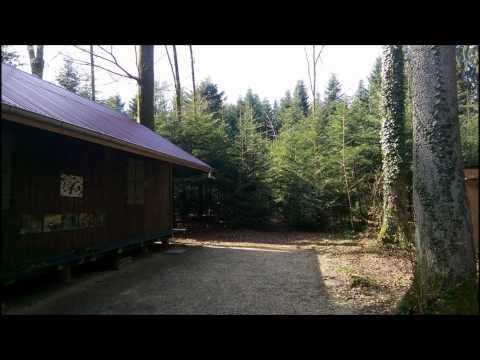 DJ Plattenknacker live @ Nachts im Wald Vol 3 (Deep House Mix)