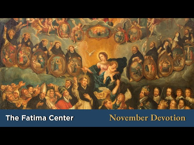 November Devotion: The Church Suffering | Monthly Devotions with Fr. Shannon Collins