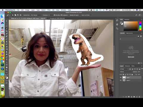 Learn How To Copy And Paste Images In Photoshop