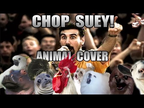 "Animals Recreate System Of A Down's ""Chop Suey"""