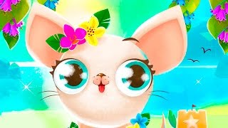 Мисс Голливуд - мультик игра для детей про собачек и кошек #ПУРУМЧАТА