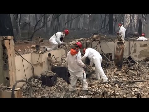 As Number of Dead, Missing Soars, FEMA Struggles to Shelter Wildfire Evacuees