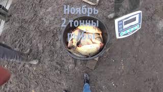 Запуск 8 ТОНН рыбы под лёд для сезона рыбалки в Воронежской области 2021