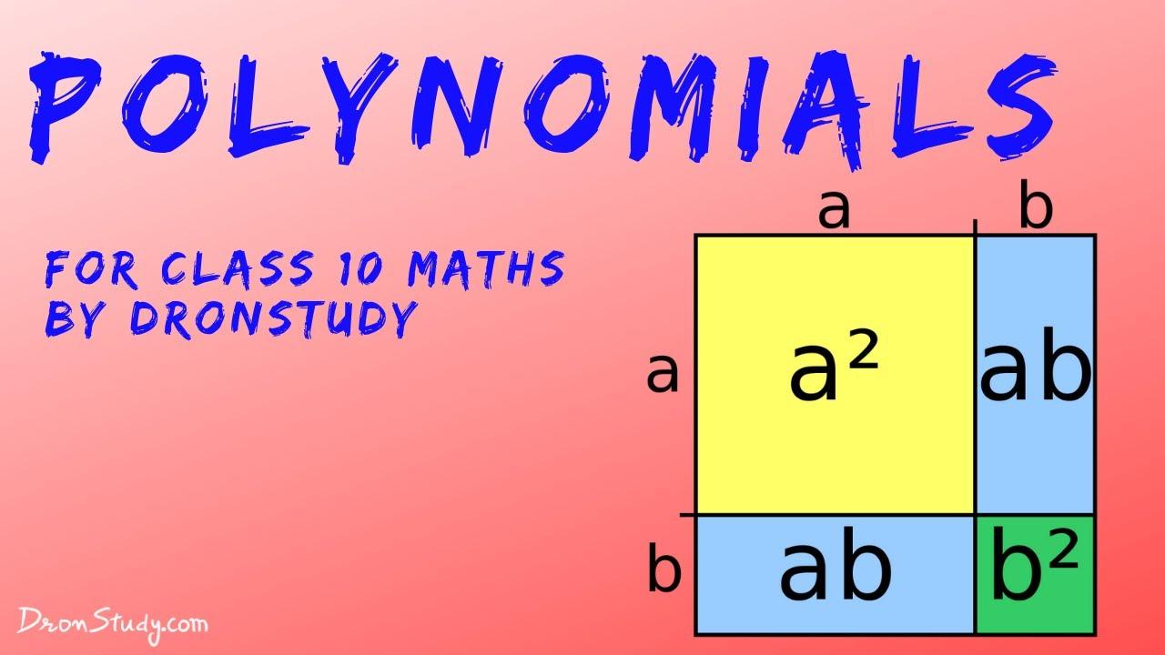 Polynomials - Class 10 : Notes - DronStudy com