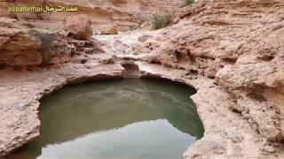 جمال الطبيعة الصحراوية | استكشاف أماكن المياه | إشعال النار | الطهي الخلوي | قرص البر