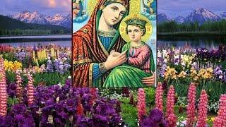 """Чудотворная икона Божией Матери """"Страстная"""""""