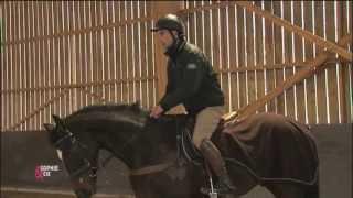 Varier les différents équilibres du cavalier influence le cheval - Equidia Life