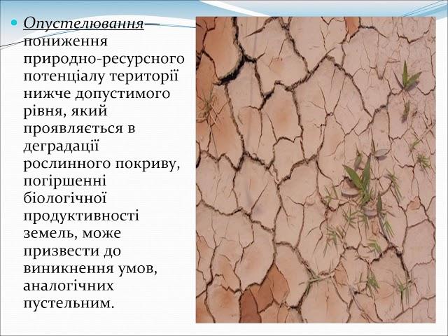 10 25   Турок Уляна Володимирівна
