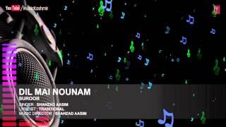 Official : Dil Mai Nounam Full (HD) Song   T-Series Kashmiri Music   Shahzad Aasim