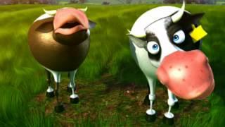 Entre Vacas