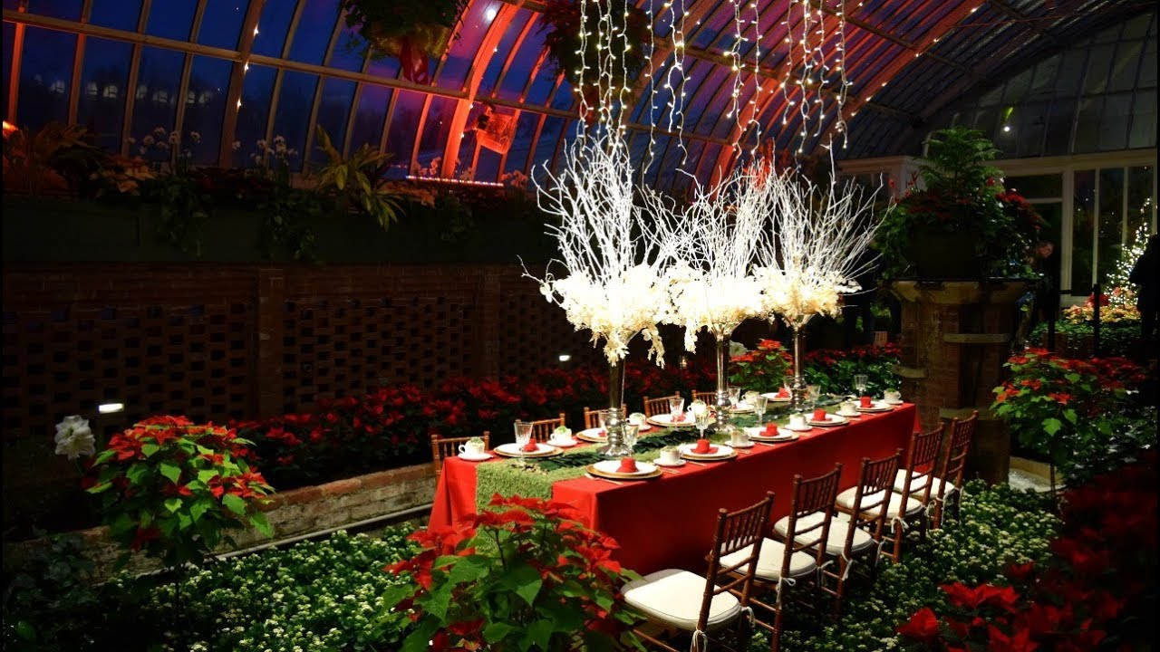 Phipps Conservatory Christmas 2021 Phipps Conservatory 2017 Winter Flower Show And Light Garden A Walk In Holiday Magic Youtube