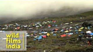 Makeshift township of devotees en route Homkund - Nanda Devi Raj Jat Yatra