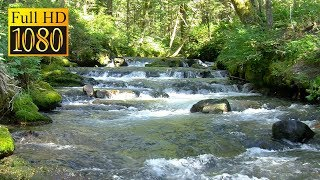 Mountain Stream Background - Relaxing Nature Scenery & Sounds (1080 Full HD)