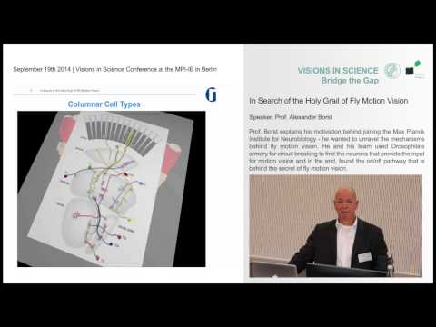 "Visions in Science 2014 | Alexander Borst ""In Search of the Holy Grail of Fly Motion Vision"""