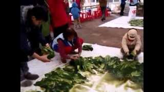 【MUJO趴趴走】道地正統客家酸菜製作過程-客家文化主題公園