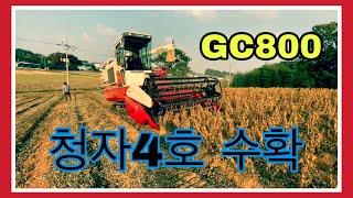gc800 청자사호 수…