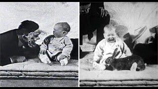 El pequeño Albert - Experimento con humanos