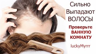 Выпадают волосы Почему волосы начали выпадать Состав шампуня Средства для волос