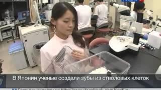 обезболивающие таблетки от зубной боли.avi(, 2014-07-24T18:06:38.000Z)