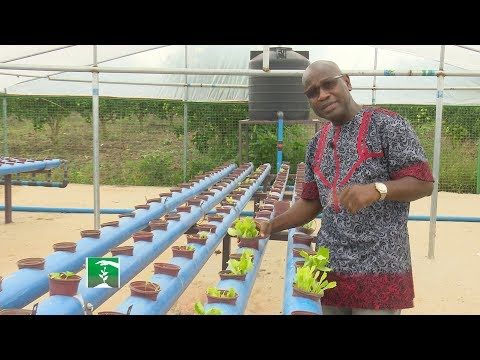 FARMERS MARKET: RESEARCH AND NIGERIA'S AGRICULTURE!