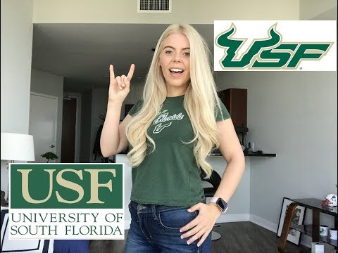 My USF Experience / University of South Florida review