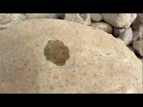 der Tropfen auf den heißen Stein