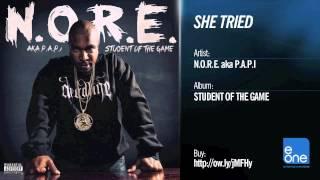 """N.O.R.E. aka P.A.P.I. """"She Tried"""""""