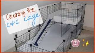 Cleaning the C&C cage │Alexandriasanimals