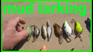River-Larking for Treasure @ Arkansas River