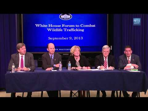 White House Forum to Combat Wildlife Trafficking
