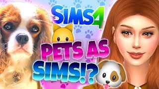 🐶🐱MY PETS AS SIMS!?🐱🐶 - The Sims 4 CAS Monday!