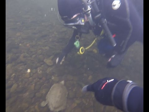 delaware drift dive 6 24
