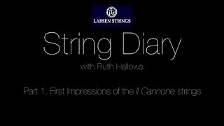 Ruth Hallows: Larsen String Diary Part 1