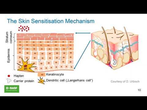 Skin Sensitisation