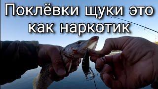 Рыбалка с Иванычем Ловля щуки на спиннинг Как я подсел на этот наркотик Щучьи поклёвки