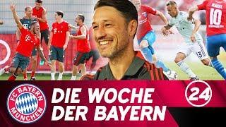 Die Woche der Bayern: Knapper Sieg in Drochtersen, Vorfreude auf die Bundesliga | Ausgabe 24