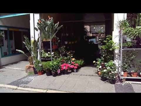 Shop presentation Coburg Germany Owner Master Florist Ben Salden