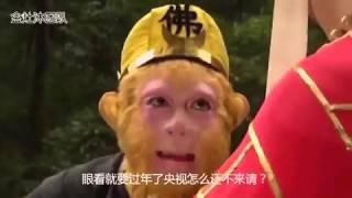 monkey king and xiyouji西游记,孙悟空